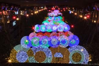 Imagen volteada simula un arbol de navidad