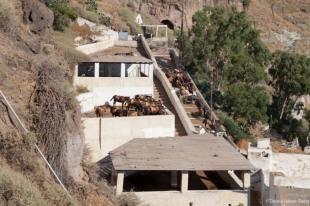Subida en burros de Fira