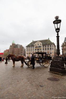 Amsterdam-445